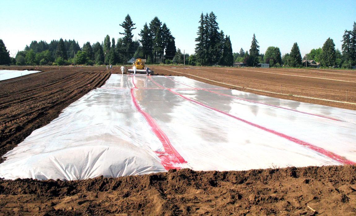 Hogy ne menjen kárba a munkája: talajfertőtlenítő szerek