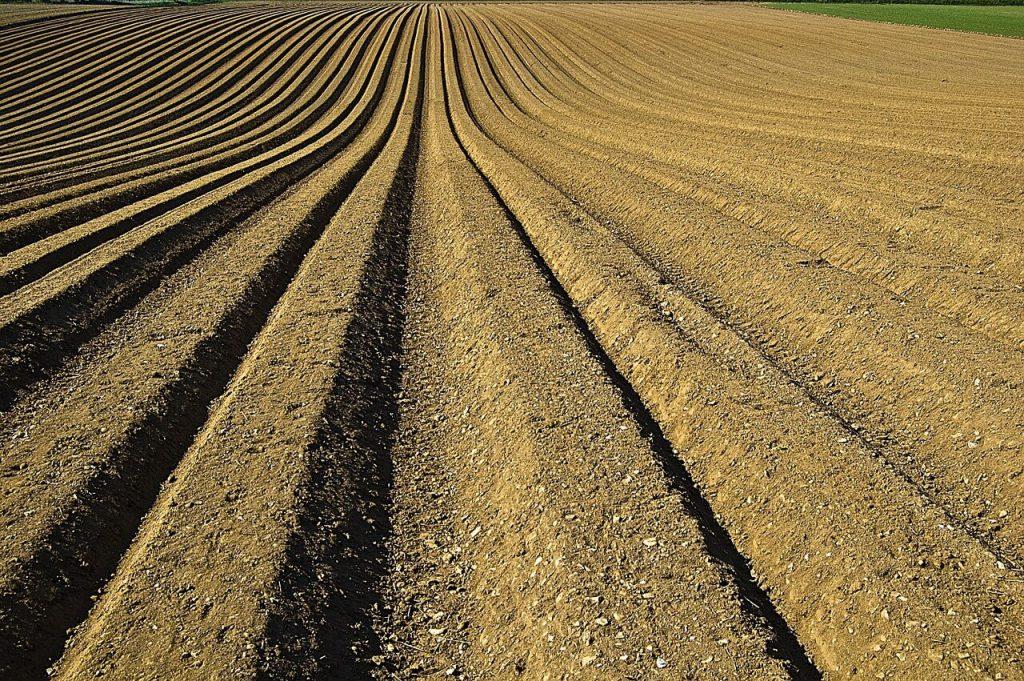 hirős agrária gazdabolt termeltetés