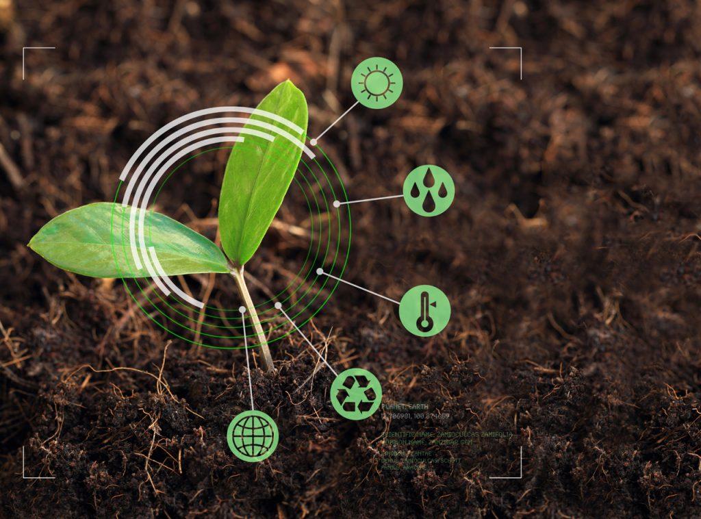 Miért hasznos Önnek a talajvizsgálat?