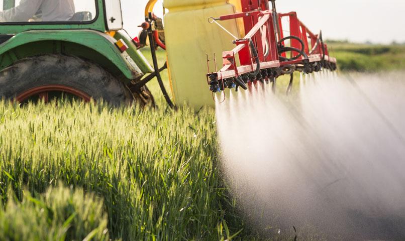 Teljesen eltűnnek a hatékony rovarölő szerek?