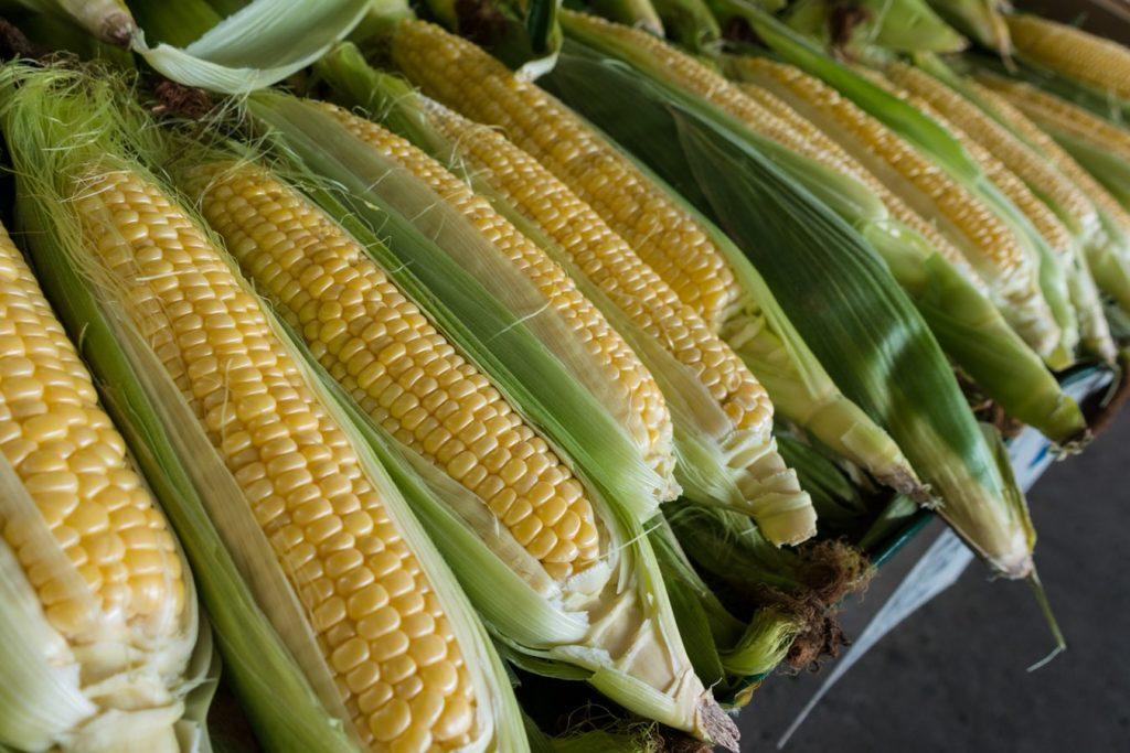 Nem titok: minden termelő jó kukorica vetőmagot akar jó pénzért