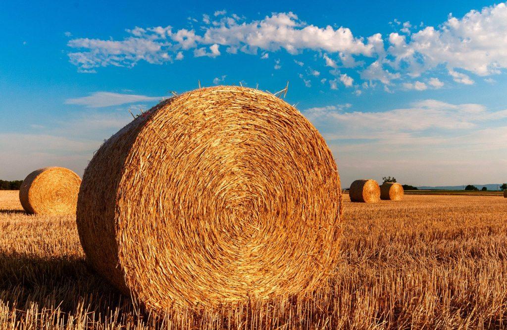 Egy jó gazdálkodási tervvel több marad a zsebében!