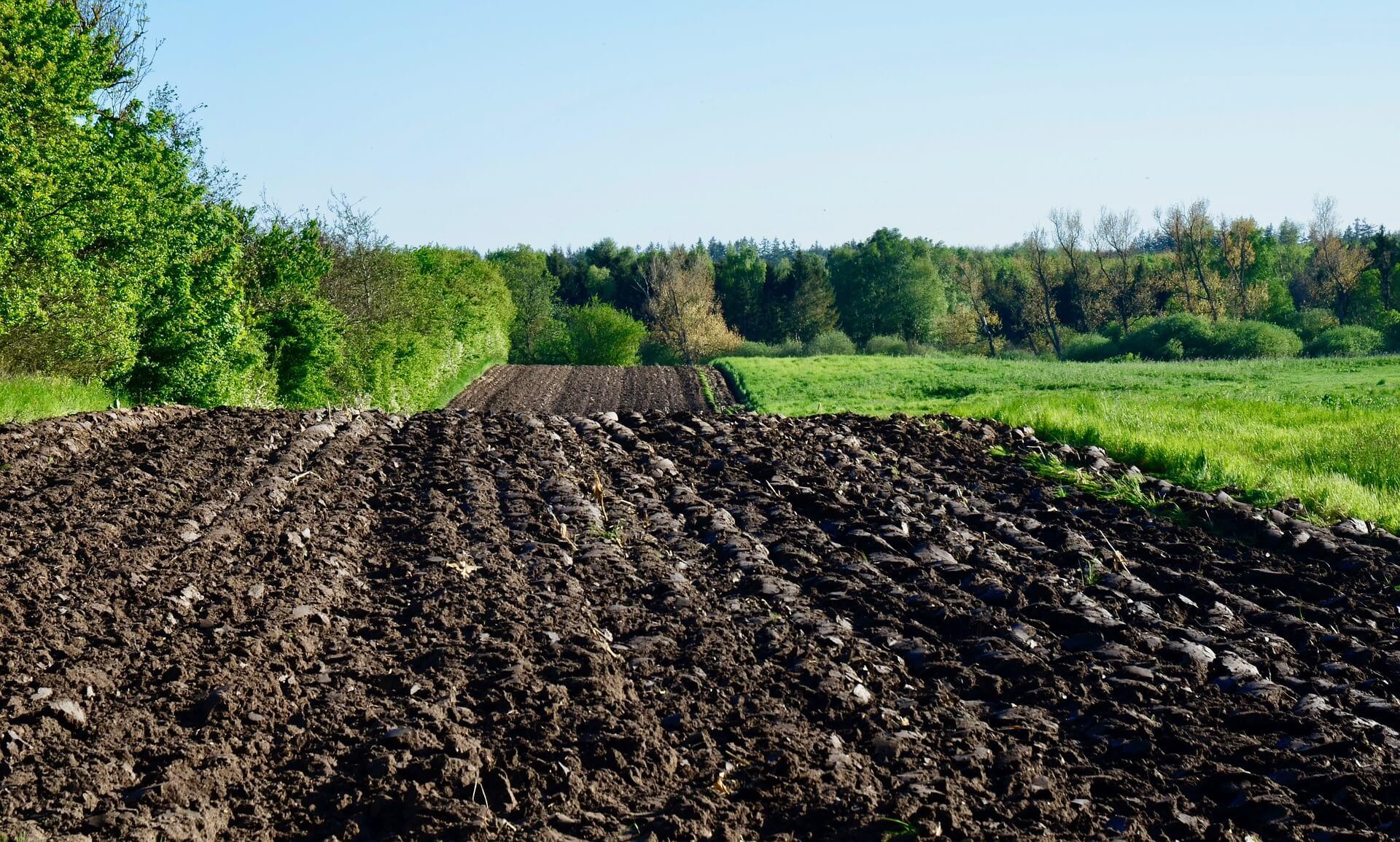 7 talajművelési hiba és következményei. Ön ismeri mindet?