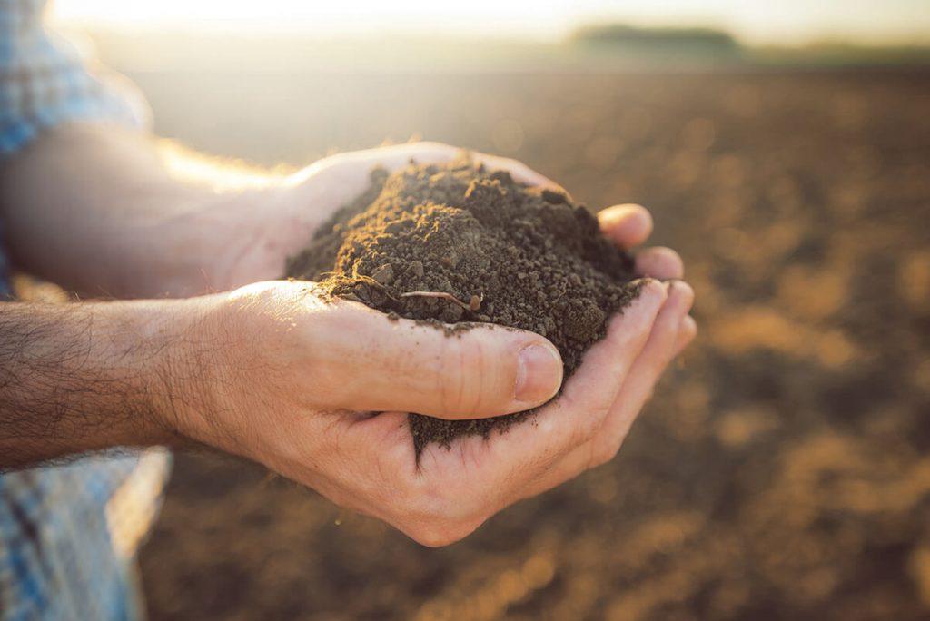 Problémás talajok javítása